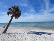One of my top two favorite places in the US: Sanibel Island, FL.